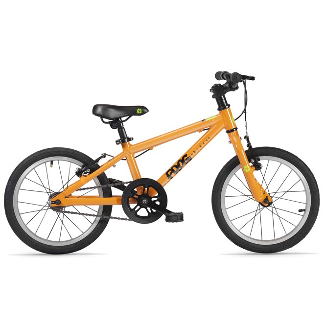 Frog 48 for Age 4-5 Years Orange